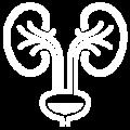 Icon-Endourologia-White